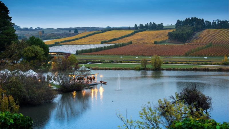 Lakeside pavilion, autumn, Tasmanian winery
