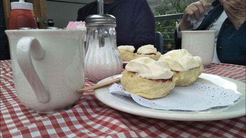 Devonshire Tea at the Judbury Market. Cakvert Park Judbury