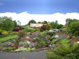 Kaydale Lodge Gardens Rockery