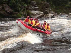 Rafting in the King River Gorge