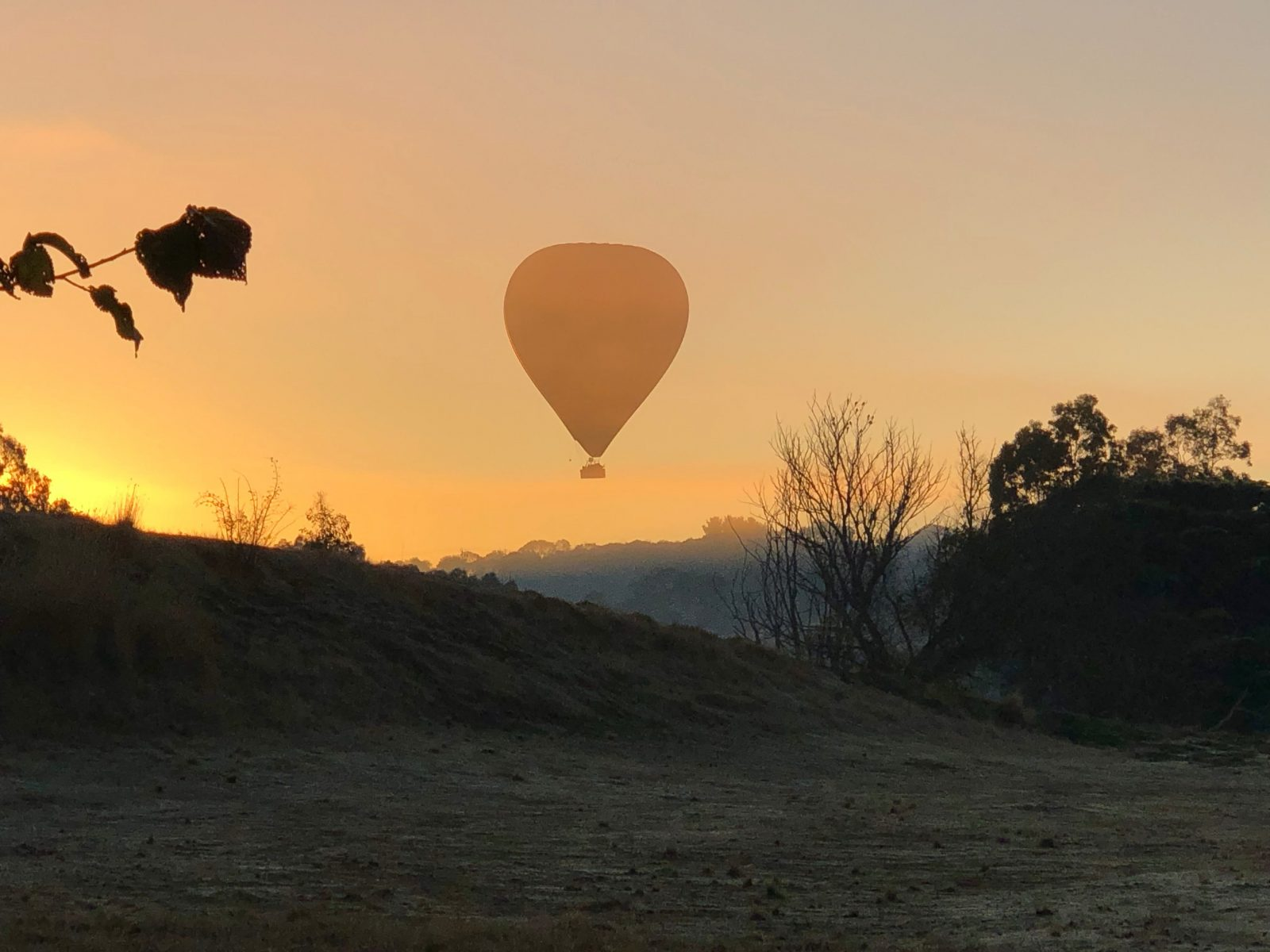 the peaceful adventure of floating in the wind in Tasmania . Hot air ballooning in the wilderness