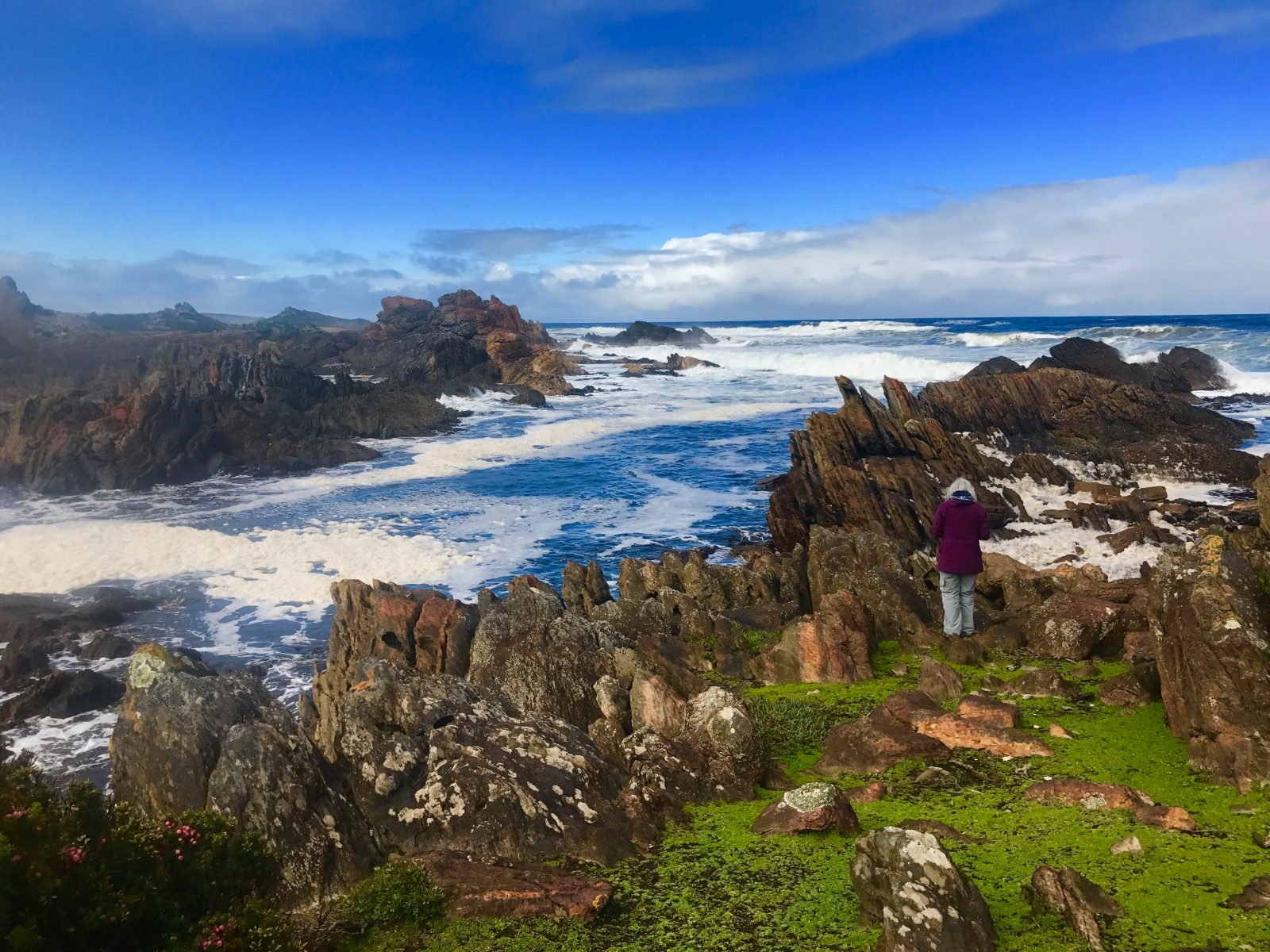 The Tarkine Wilderness 3 day Pack-Free walk from Life's An Adventure