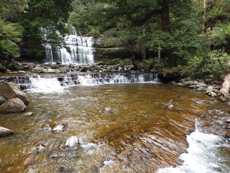 Liffey Falls/Liffey Forest Reserve