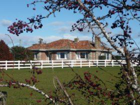 Little Sunnyside House