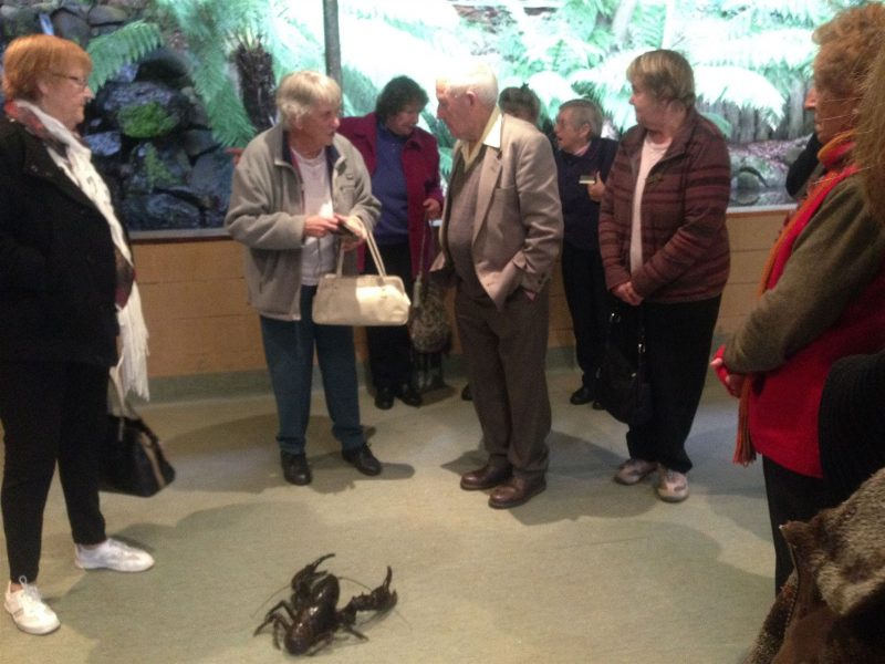 Group visiting the Lobster Ponds