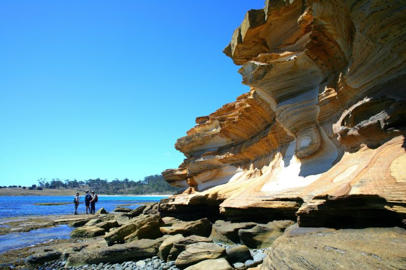 Discovery Ranger guided walk, Painted Cliffs, Maria Island National Park