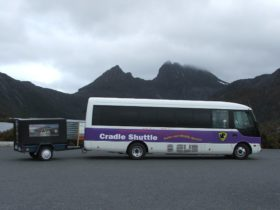 Cradle Mt Coach