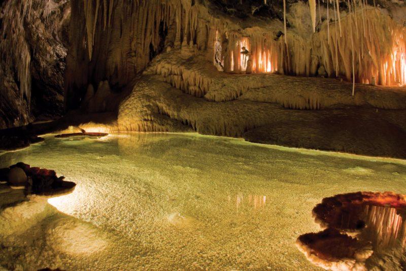 Mole Creek Caves