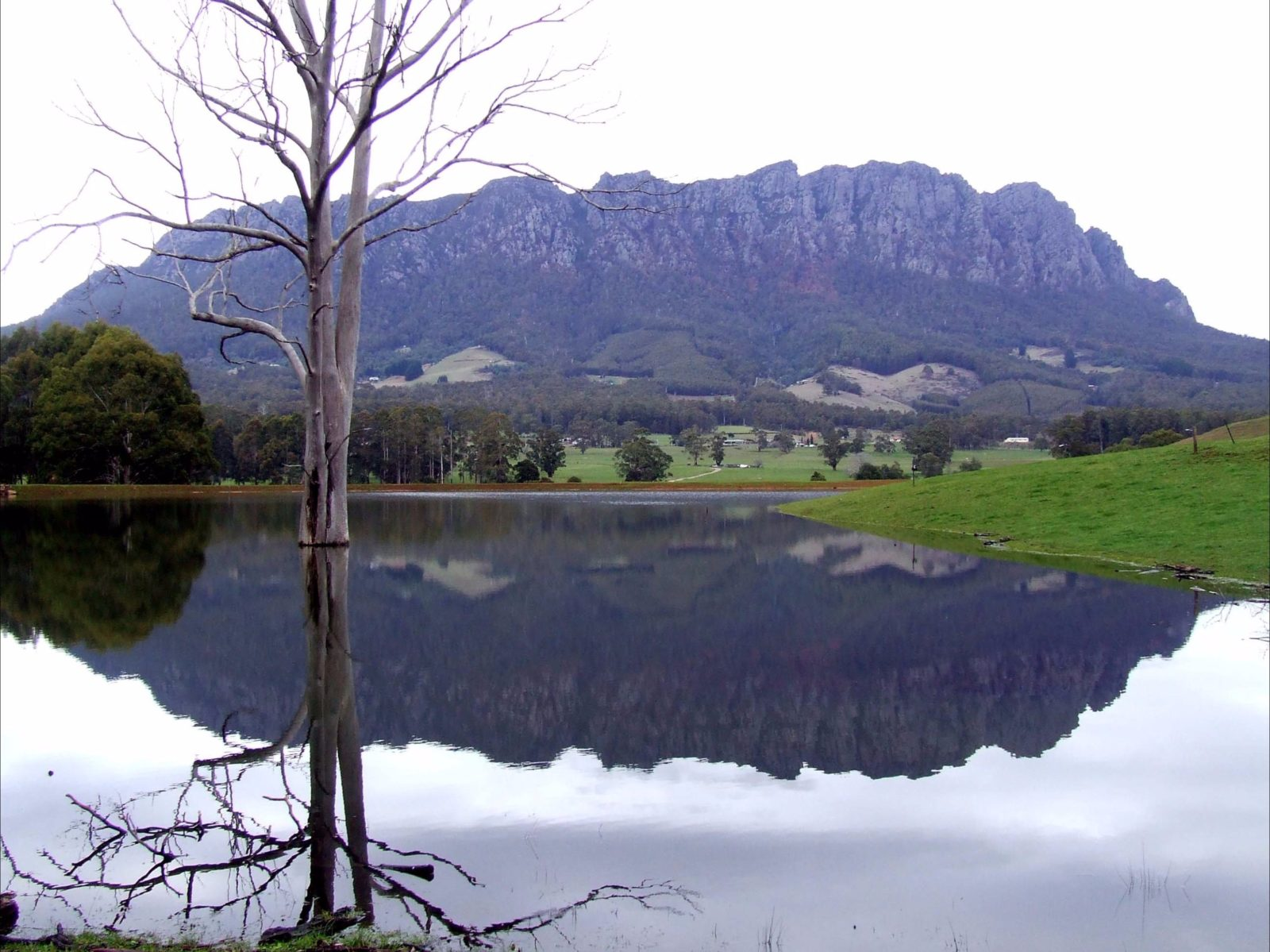 Mount Roland reflection