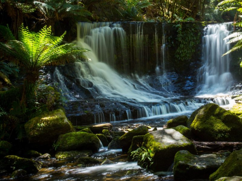 Mt Field National Park