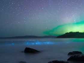 Aurora australis over water