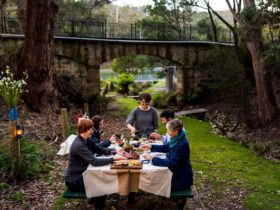 Dine in the great outdoors Tasmanian wine, cheese and food