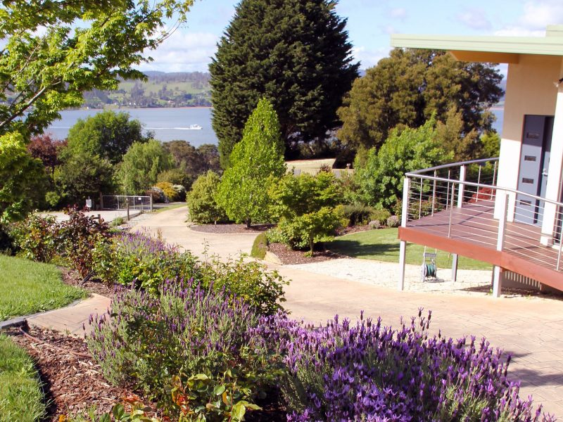 Looking down the approach driveway out to the Tamar with free parking below the BnB.