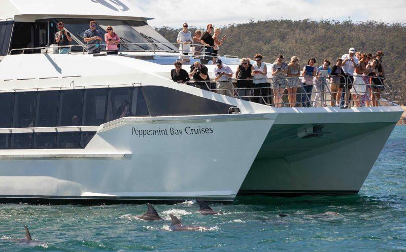 Peppermint Bay cruises