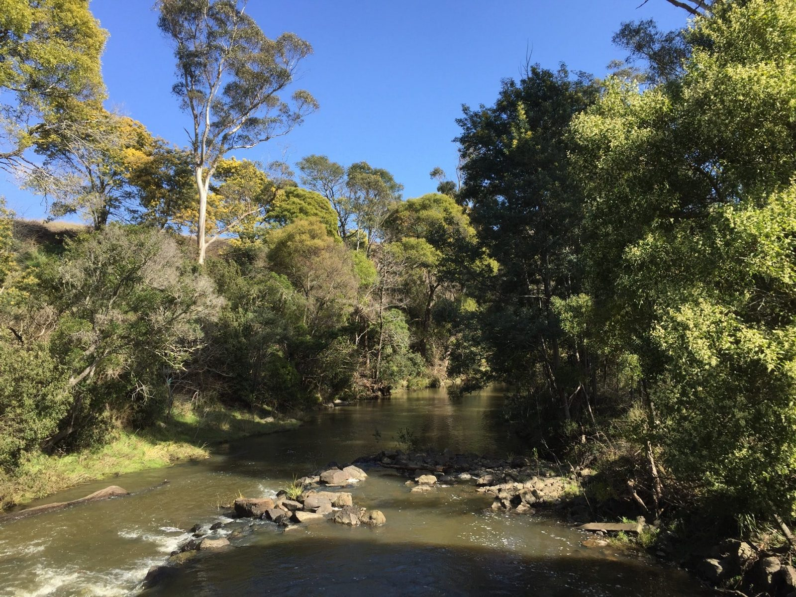 Pipers River