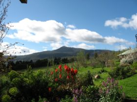 Plovers Ridge Country Retreat