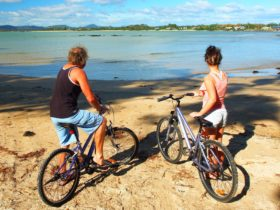Two people on the beach with their bikes