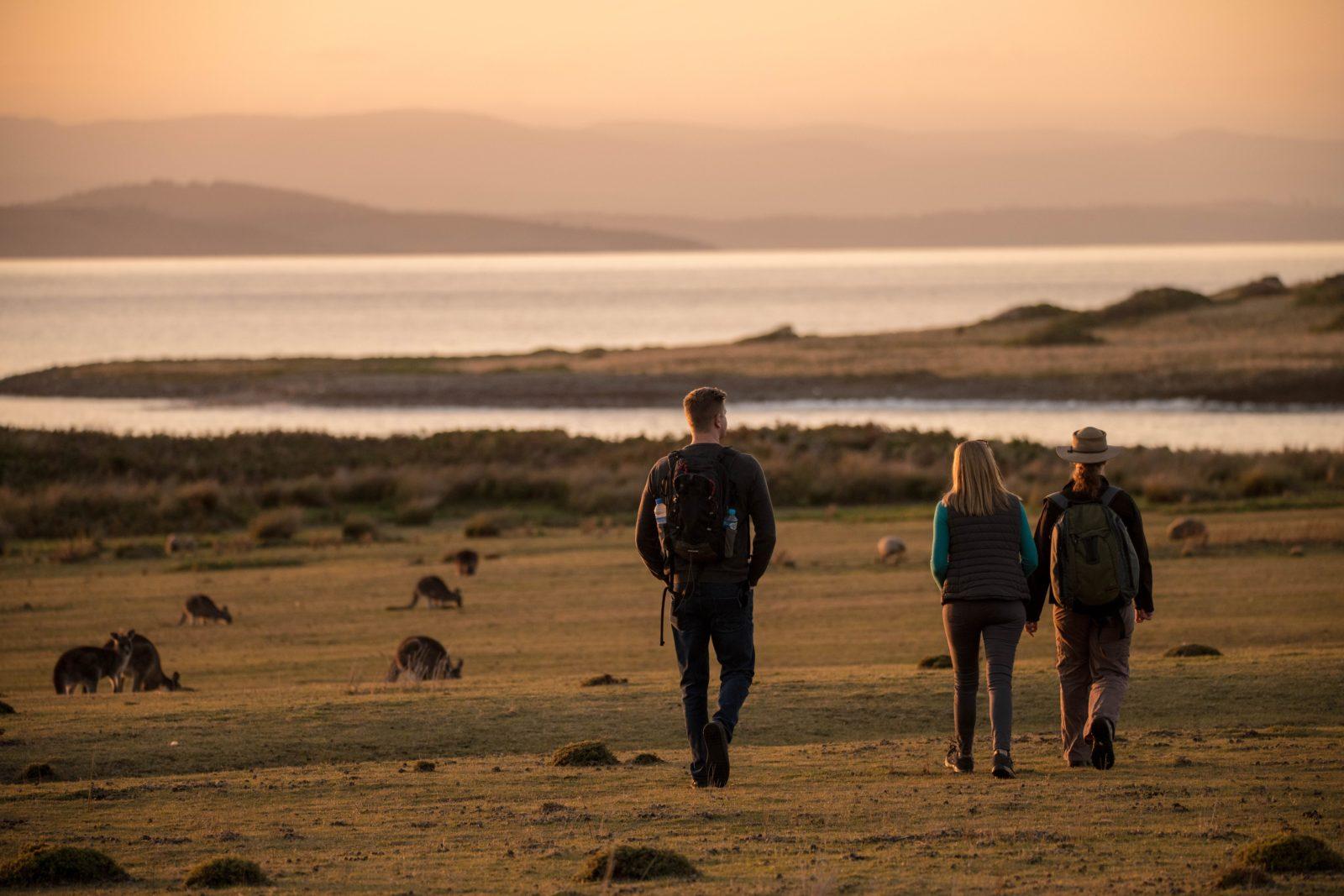 Premier Travel Tasmania - private tours