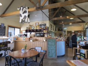 Interior of Pyengana Dairy Farm Cafe