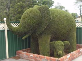 Railton: Town of Topiary - an elephant and its baby