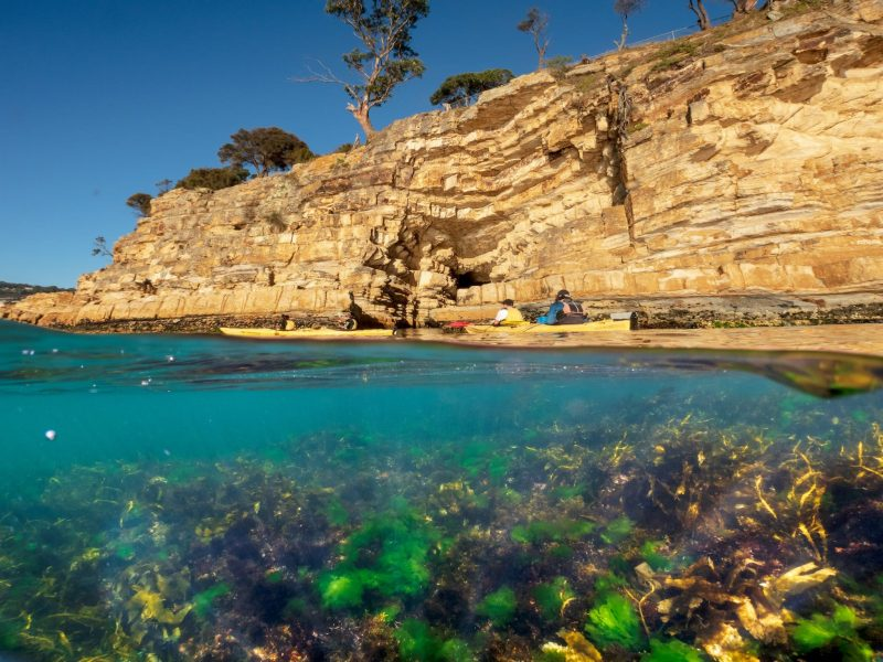 Hobart's cliffs, kayakers on the water and underwater life