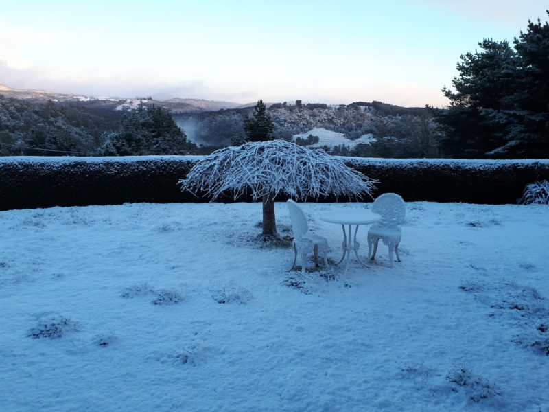 Magical winter snow covering Robin's Nest grounds looking to the west.