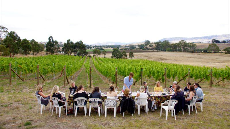 Hobart Wine Tours, Tasmania wine, coal river valley wine tour, hobart winery, tours hobart