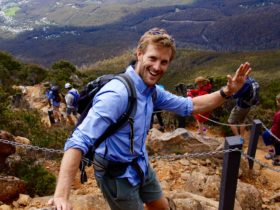 See Tasmania Tours, Pinnacle to Pint, Hobart Hiking Tour, Mt. Wellington tour, kunanyi tours, hobart
