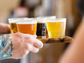 Craft beer flight at Seven Sheds brewery