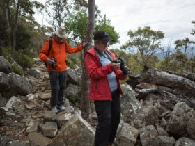 Photographers on walkabout on Mt Wellington - with Shutterbug Walkabouts (photography tours)