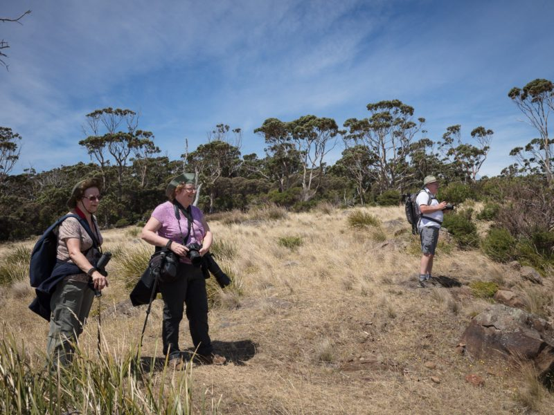 Small group private tour to Maria Island, Tasmania, with Shutterbug Walkabouts (photography tours)