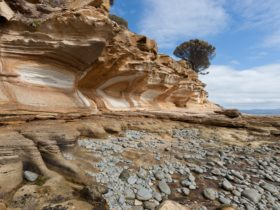Painted Cliffs, Maria Island, Tasmania - Shutterbug Walkabouts photography tours