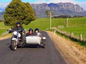Harley Davidson experience north west Tasmania. Two seater sidecar tour around stunning Mt Roland