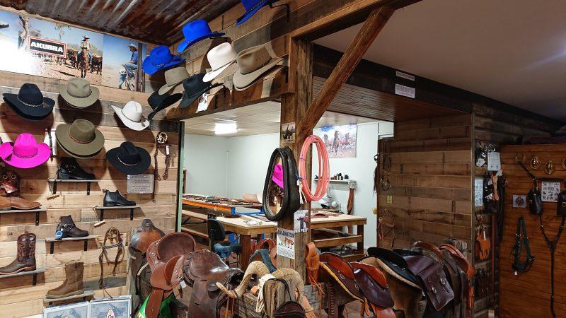 Saddle Area