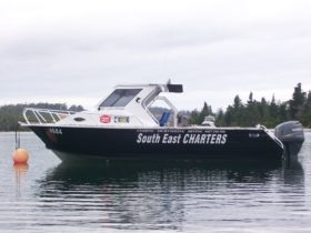 South East Charters