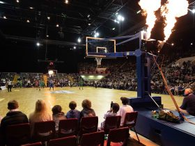 Flames at a Southern Huskies game after a basket!