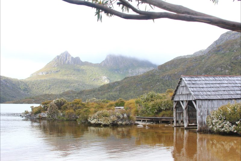 Cradle Lake on Tasmania Wilderness Explorer tours with Spirit Safaris