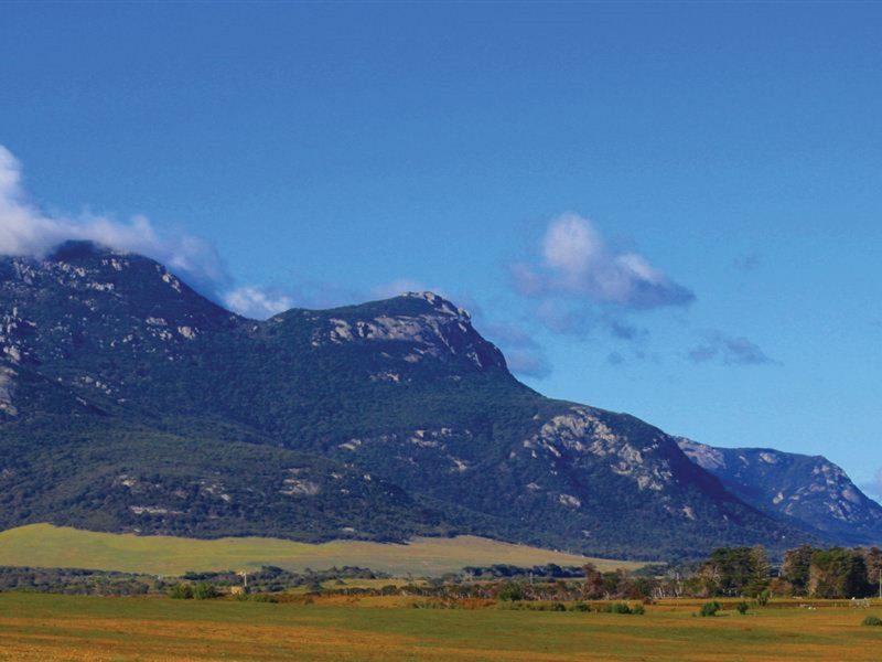 Strzelecki National Park