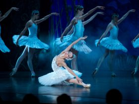 The Imperial Russian Ballet Company presents SWAN LAKE (image credit Jared Taylor)