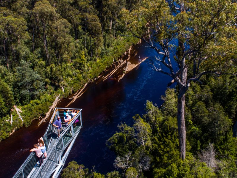 The famous Tahune AirWalk located at Tahune Adventures Tasmania, Lodge and Cabin accommodation.