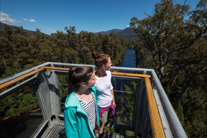 Beautiful view from the Airwalk walkway at Tahune Adventures Tasmania