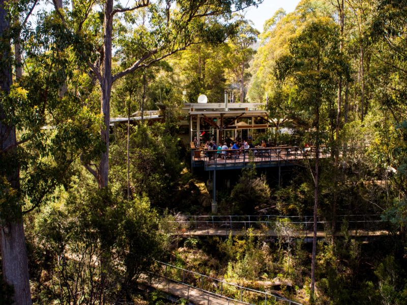Tahune Adventures Visitor Centre and cafe complex - Arve Rd. Geeveston Tasmania