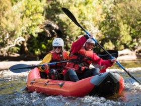 Picton River Tasmania - Twin Rivers Adventure