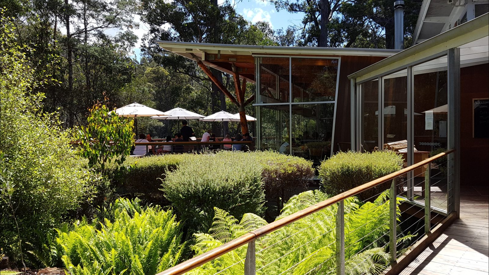 Tahune Adventures Cafe