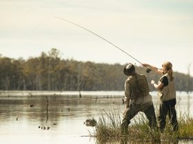 Tarraleah Estates Guided Fly Fishing Tours in Tasmania's highlands