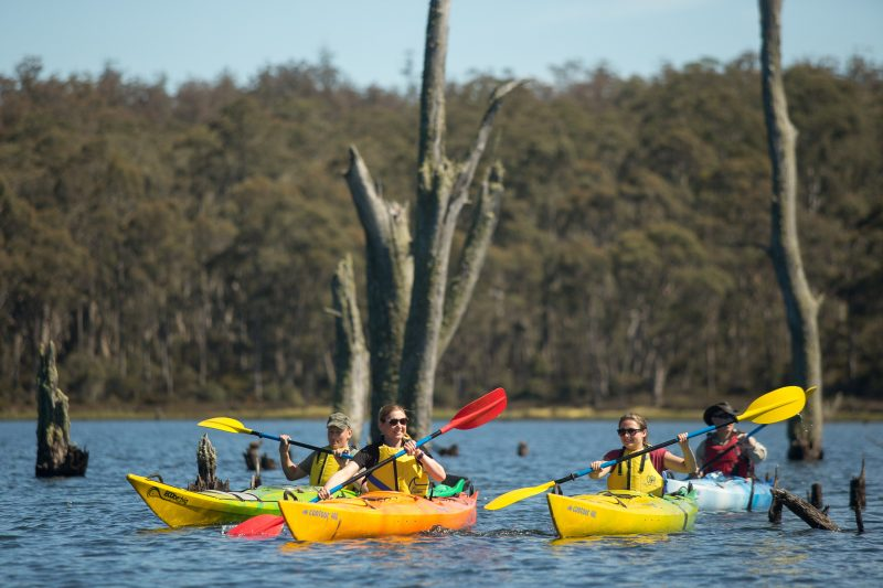 Tarraleah Estates Kayaking Adventure tour is on stunning Tasmanian Highland Lakes