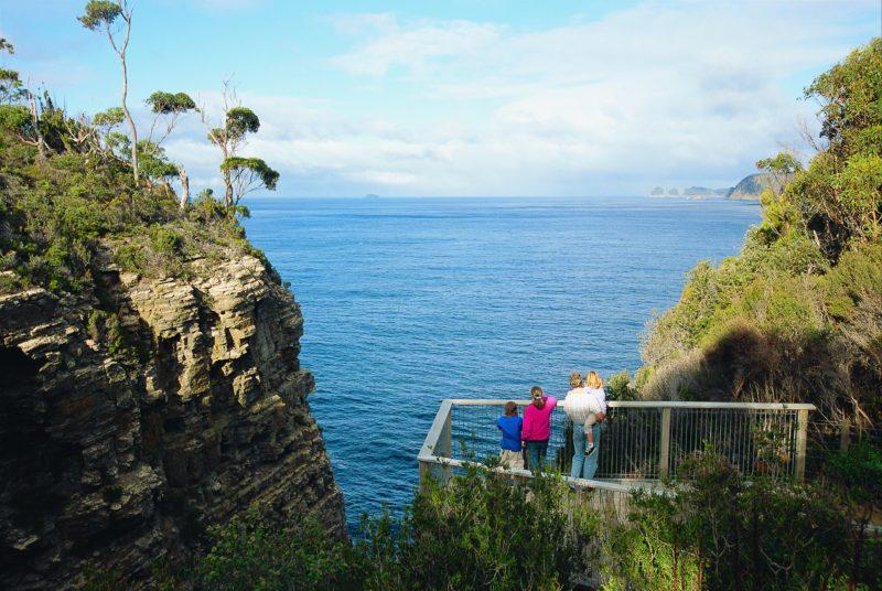 Waterfall Bay Great Short Walk, Tasman National Park