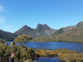 Cradle Mountain, Hearty tasmania tour, west coast wilderness tour, Day tour