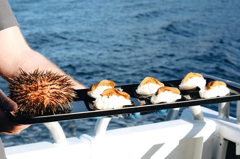 Tasmanian Sea Urchin - caught by our diver and served fresh onboard our Deep-to-Dish tour