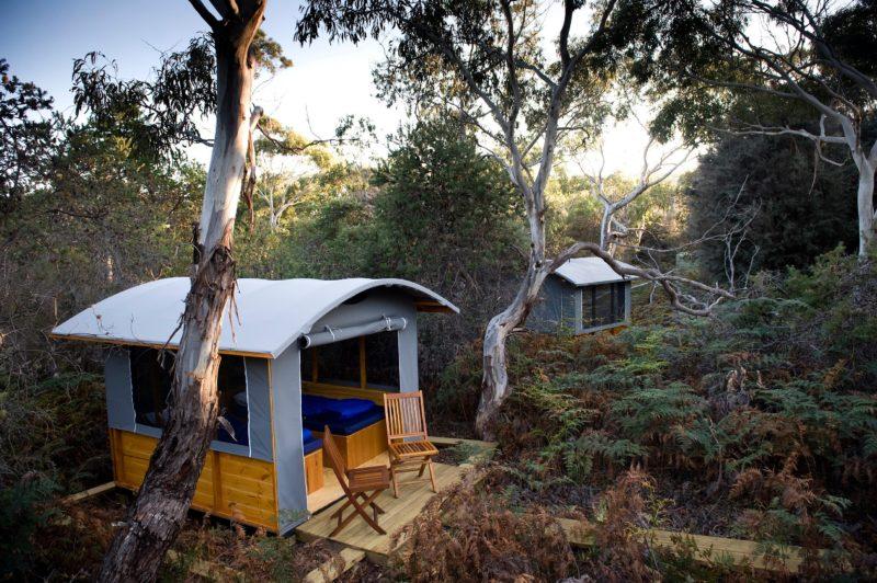 Wilderness Camp on The Maria Island Walk